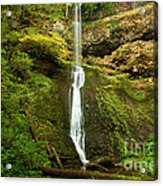 Winter Falls Acrylic Print by Adam Jewell