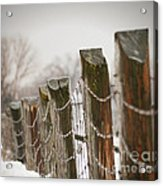 Winter Fence Acrylic Print by Sandra Cunningham