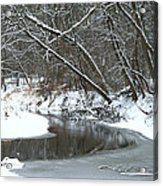 Winter In The Park Acrylic Print by Kay Novy