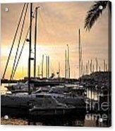 Yachts At Sunset Acrylic Print by Carlos Caetano