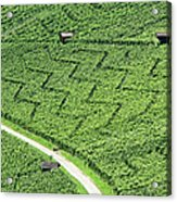 Zig-zag In Vineyards Acrylic Print by Ursula Sander
