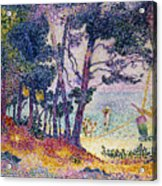 A Pine Grove Acrylic Print by Henri-Edmond Cross