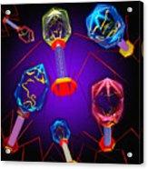 Bacteriophages Acrylic Print by Mehau Kulyk