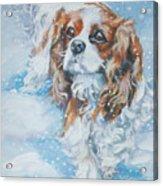Cavalier King Charles Spaniel Blenheim In Snow Acrylic Print by Lee Ann Shepard