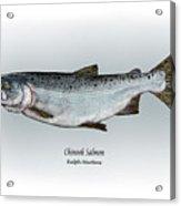Chinook Salmon Acrylic Print by Ralph Martens
