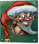 Christmas Elf Acrylic Print by Kevin Middleton