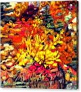 Detail Of Fall Acrylic Print by Kimberly Simon