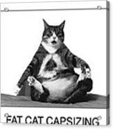 Fat Cat Capsizing Acrylic Print by Richard Watherwax