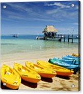Fiji, Malolo Island Acrylic Print by Himani - Printscapes