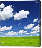 Green Rolling Hills Under Blue Sky Acrylic Print by Elena Elisseeva