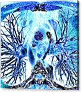 Heart And Lungs, 3d Ct Scan Acrylic Print by Pasieka