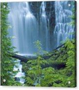 Lower Proxy Falls Acrylic Print by Greg Vaughn - Printscapes