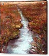 October Goshen Creek Acrylic Print by Peter R Davidson