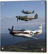 P-51 Cavalier Mustang With Supermarine Acrylic Print by Daniel Karlsson