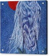 Snow Bird Acrylic Print by Shahid Muqaddim
