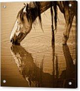 Somewhere West Of Laramie Acrylic Print by Ron  McGinnis