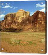 Sparse Tussock And Rock Formations In The Wadi Rum Desert Acrylic Print by Sami Sarkis