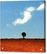 Summer Field With Two Trees 2 Ae2 Acrylic Print by Lyle Crump