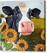 Sunflower Sally Acrylic Print by Laura Carey
