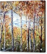 Tetons In Autumn Acrylic Print by Patricia Pushaw