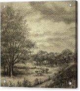 Wickliffe Landscape  Acrylic Print by Debi Frueh