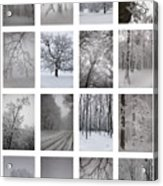 Winter Time Acrylic Print by Gabriela Insuratelu