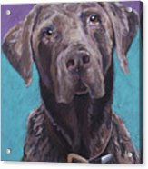 100 Lbs. Of Chocolate Love Acrylic Print by Pat Saunders-White