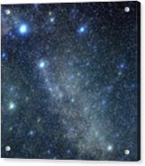 Cygnus Constellation Acrylic Print by John Sanford