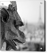 Gargoyle Guarding The Notre Dame Basilica In Paris Acrylic Print by Pierre Leclerc Photography