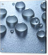Water Drops Acrylic Print by Blink Images