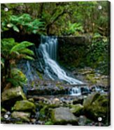 Waterfall In Deep Forest Acrylic Print by Ulrich Schade