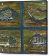 4 Fishes Acrylic Print by Anna Folkartanna Maciejewska-Dyba