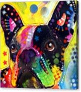 French Bulldog Acrylic Print by Dean Russo