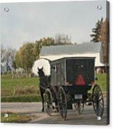 Amish Buggy Acrylic Print by David Arment