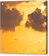 Sunset Acrylic Print by Angela Doelling AD DESIGN Photo and PhotoArt