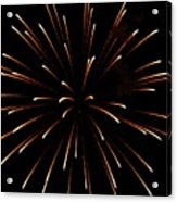 A 4th Of July Flower Acrylic Print by Robert Wolverton Jr