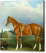 A Chestnut Hunter And A Spaniel By Farm Buildings  Acrylic Print by John E Ferneley