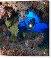 A Diver Peers Through A Coral Encrusted Acrylic Print by Steve Jones