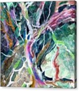 A Dying Tree Acrylic Print by Mindy Newman