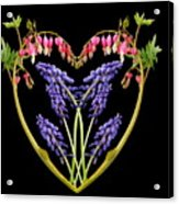 A Heart Of Hearts Acrylic Print by Michael Peychich