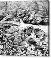A Hiker's View - Landscape Print Acrylic Print by Kelli Swan