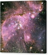 A Star-forming Region In The Small Acrylic Print by Stocktrek Images