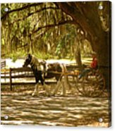 A Stroll In The Park Acrylic Print by Adele Moscaritolo