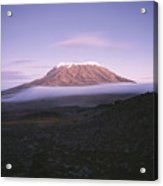A View Of Snow-capped Mount Kilimanjaro Acrylic Print by David Pluth