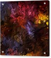 Abstract 5-23-09 Acrylic Print by David Lane