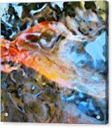 Abstract Fish Art - Fairy Tail Acrylic Print by Sharon Cummings