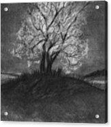Advice From A Tree Acrylic Print by J Ferwerda