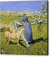 Afternoon In The Alps Acrylic Print by Giovanni Segantini