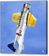 Air Show Acrylic Print by Marc Stewart