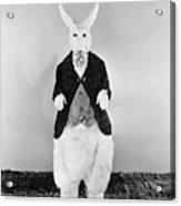Alice In Wonderland, 1933 Acrylic Print by Granger